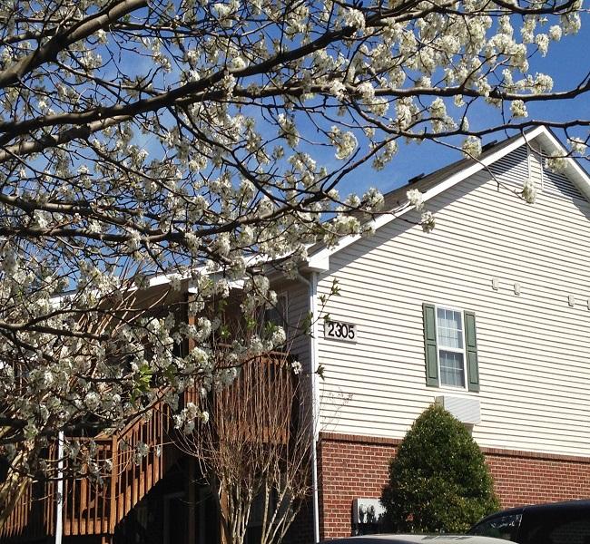 Affordable Housing Management, Inc.